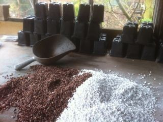 Topping mix; I gave up composts for seed & cuttings decades ago.