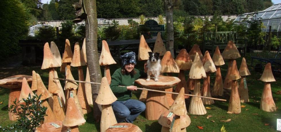 Fine flush of mushrooms and a pretty gnome