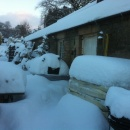 Snowed in the Potting Shed
