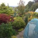 Overlooking Plantsmans Corner