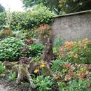 Eggleston Hall Gardens...Stump garden